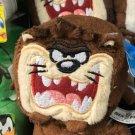 "Six Flags Magic Mountain Looney Tunes Tasmanian Devil ""Taz"" 2"" Plush New"