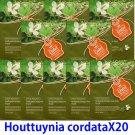 Houttuynia cordata face mask pack 20 sheets