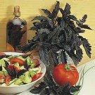 HEIRLOOM NON GMO Midnight Ruffles Basil 100 seeds