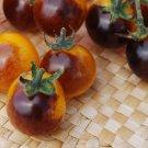 HEIRLOOM NON GMO Golden Blue Berries Tomato 25 seeds