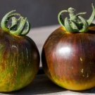 HEIRLOOM NON GMO Wagner Blue Green Tomato 25 seeds