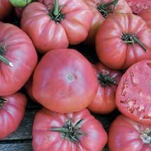 HEIRLOOM NON GMO Ozark Pink Tomato Tomato 25 seeds