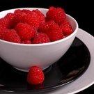 HEIRLOOM NON GMO Red Raspberry 50 seeds