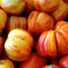 HEIRLOOM NON GMO German BiColored Tomato 25 seeds (RARE)