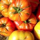 HEIRLOOM NON GMO Hillbilly Tomato 25 seeds (RARE)