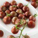 HEIRLOOM NON GMO Chcolate Cherry Tomato 25 Seeds