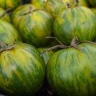 HEIRLOOM NON GMO Green Zebra Tomato 25 seeds