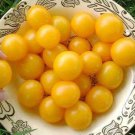 HEIRLOOM NON GMO Hartman's Yellow Gooseberry Tomato 25 seeds