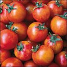 HEIRLOOM NON GMO Isis Candy Cherry Tomato 25 seeds