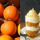 HEIRLOOM NON GMO  New England Sugar Pie Pumpkin 15 seeds
