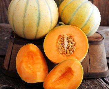 HEIRLOOM NON GMO Charentais Melon 15 Seeds