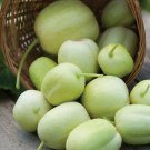 HEIRLOOM NON GMO Crystal Apple Cucumber 15 seeds