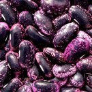 HEIRLOOM NON GMO Scarlet Runner Bean 25 seeds