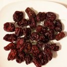 HEIRLOOM NON GMO Chocolate Habanero Pepper 25 seeds