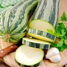 HEIRLOOM NON GMO Caserta Squash 15 seeds