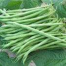 HEIRLOOM NON GMO Calima French Filet Bean 25 seeds