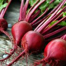 HEIRLOOM NON GMO Crosby's Egyptian Beet 25 seeds