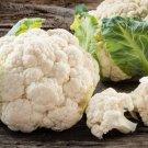 HEIRLOOM NON GMO Durgesh 41 Cauliflower 100 seeds