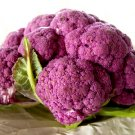 HEIRLOOM NON GMO Purple of Sicily Cauliflower 100 seeds