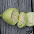 HEIRLOOM NON GMO Applegreen Eggplant 25 seeds