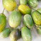 HEIRLOOM NON GMO Arumugam's Eggplant 25 seeds