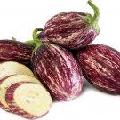 HEIRLOOM NON GMO Edirne Purple Striped Eggplant 25 seeds