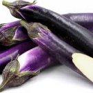 HEIRLOOM NON GMO Japanese Pickling Eggplant 25 seeds