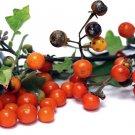 HEIRLOOM NON GMO Korean Red Eggplant 25 seeds