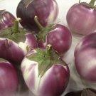 HEIRLOOM NON GMO Round Mauve Eggplant 25 seeds