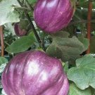 HEIRLOOM NON GMO Thai Purple Ribbed Eggplant 25 seeds