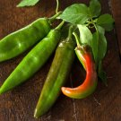 HEIRLOOM NON GMO Anaheim  Hot Pepper 15 seeds