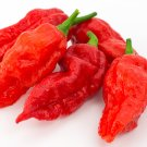 HEIRLOOM NON GMO Bhut Jolokia or Ghost Pepper 15 seeds
