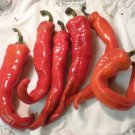 HEIRLOOM NON GMO Grandpa's Home Hot Pepper 15 seeds