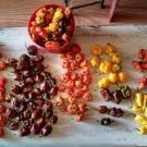 HEIRLOOM NON GMO Lightning Mix Hot Pepper 15 seeds