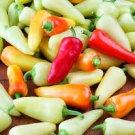 HEIRLOOM NON GMO Santa Fe Grande Pepper Hot Pepper 15 seeds
