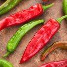 HEIRLOOM NON GMO Friariello Di Napoli Pepper 25 seeds