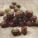 HEIRLOOM NON GMO Miniature Chocolate Bell Pepper 25 seeds