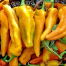 HEIRLOOM NON GMO Yellow Monster Pepper 25 seeds