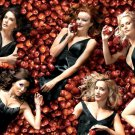 Desperate Housewives Apples TV Series 16x12 Print POSTER