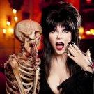 Cassandra Peterson Elvira Mistress Of The Dark TV Show 32x24 Print Poster