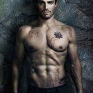 Stephen Amell Shirtless Arrow TV Show Actor 16x12 Print POSTER