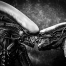 Aliens Kiss Love Xenomorph BW Movie Sci Fi Art 24x18 Wall Print POSTER