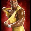 Hulk Hogan Wrestling WWE Terry Gene Bollea Sport 32x24 Wall Print POSTER