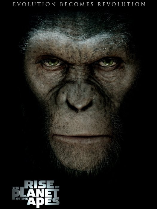 Rise Of The Planet Of The Apes Caesar Movie 24x18 Wall Print POSTER