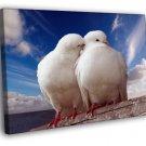 Pigeons Dove Blue Sky Sea Love Romance Kiss 40x30 Framed Canvas Print