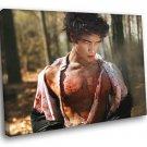 Teen Wolf Scott McCall Tyler Posey TV Series 30x20 Framed Canvas Print