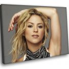 Shakira Singer Curls R B Pop Music 30x20 Framed Canvas Art Print