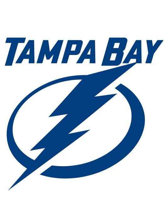 Tampa Bay Lightning Logo Hockey Sport Art 32x24 Print Poster