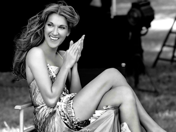 Celine Dion Smile Dress Legs BW Amazing Beautiful 24x18 Wall Print POSTER