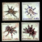 Tarantulas, Romania set of 4 stamps, mnh 2010 issue